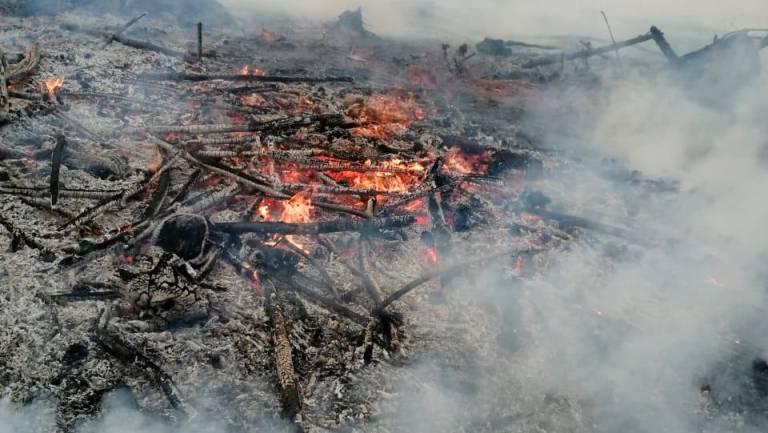 Incendios forestales en Imbabura y Carchi han consumido 2 720,56 hectáreas hasta la fecha